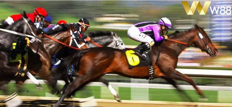 เกม แข่งม้า ที่สนุกและให้ภาพที่สวยงามคมชัด